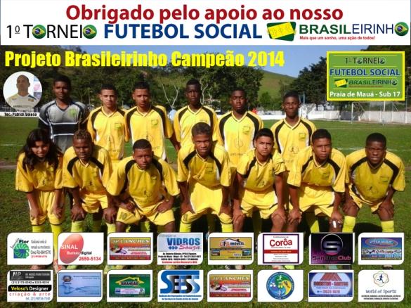 Poster de campeão 2014